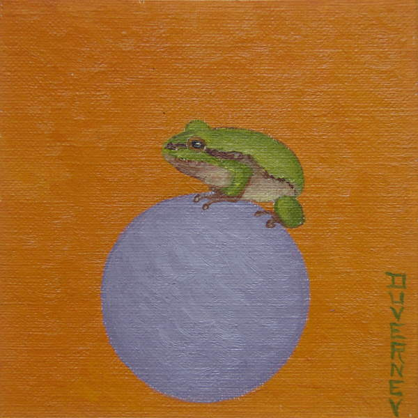 grenouille-cercle